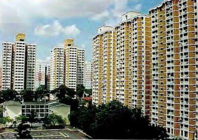 Project Woodland, Bukit, Jurong West (2)